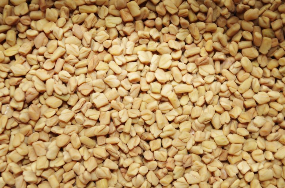 Graines de fenugrec à consommer