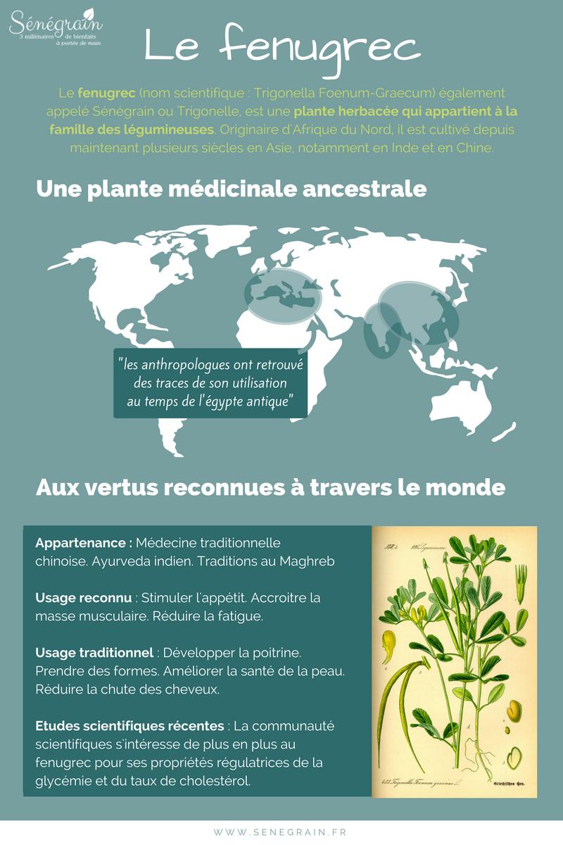 Infographie sur l'origine du fenugrec